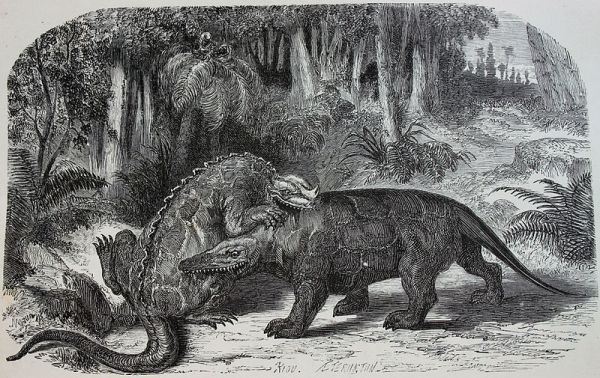 800px-Iguanodon_versus_Megalosaurus