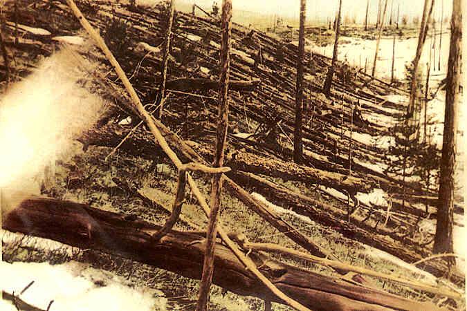 Tunguska forest (Photograph taken by Evgeny Krinov near the Hushmo river, 1929).